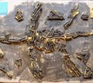 Pleisiosaur model